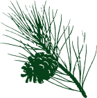 Gartenpflege Usedom